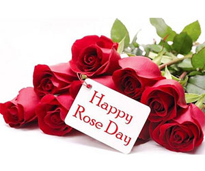 Happy Rose Day Message